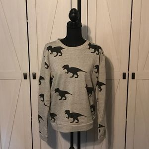 NWT Dinosaur sweatshirt.